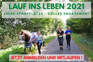 Team Ponyrunner läuft